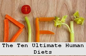 https://foreverhealthy.blogspot.com/2012/04/ten-ultimate-best-human-diets-for.html#more