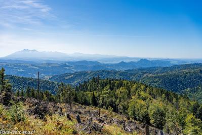 Tatry z punktu widokowego między Wielkim Rogaczem a Przełęczą Żłobki