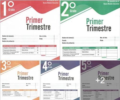 Exámenes Trimestrales - Primer Trimestre - Primaria