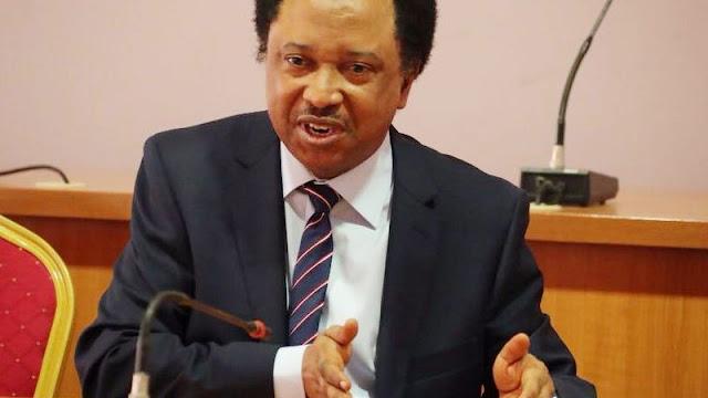 Buhari still has a lot to do – Shehu Sani