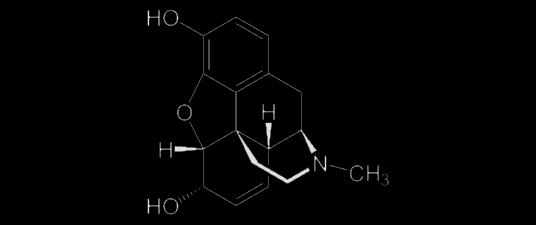 La struttura di una molecola di morfina. Fonte: wikipedia