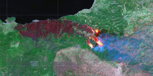 Στα 40.000 στρέμματα η έκταση του δάσους που έγιναν στάχτη από την φωτιά στο Σχίνο