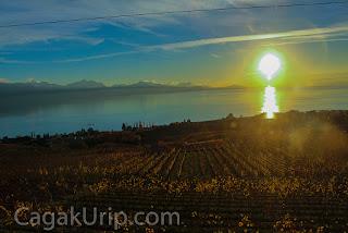 Pemandangan dari kereta menuju Zurich