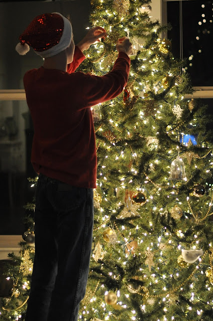 "Jen Gallacher ""Christmas Tree Lights Love Language"""