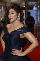 Payal Ghosh aka Harika in Dark Blue Deep Neck Sleeveless Gown at 64th Jio Filmfare Awards South 2017 ~  Exclusive 135.JPG