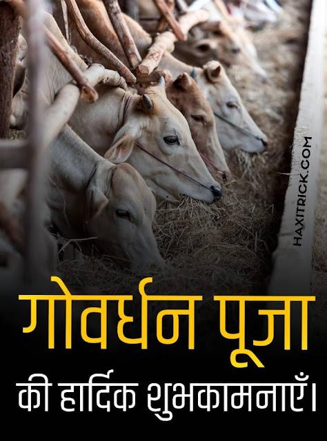 Govardhan Puja Ki Shubhkamnaye Hindi Photos