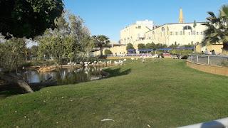 تعرف على اكبر حديقة حيوانات بالرياض ومواعيد الدخول واسعار التذاكر
