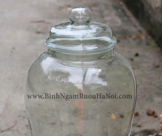 Binh thuy tinh nap day 40 lit dang sam