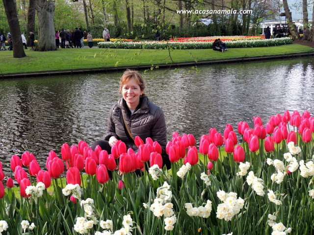 Keukenhof, o jardim mais bonito do mundo