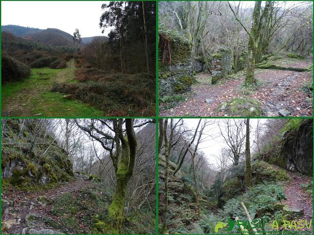 Ruta al Pico Gobia y La Forquita: Entrando en la Biescona