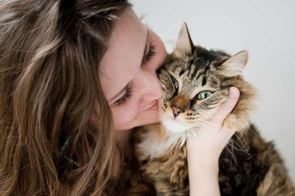 Saiba porque os gatos preferem as mulheres do que os homens