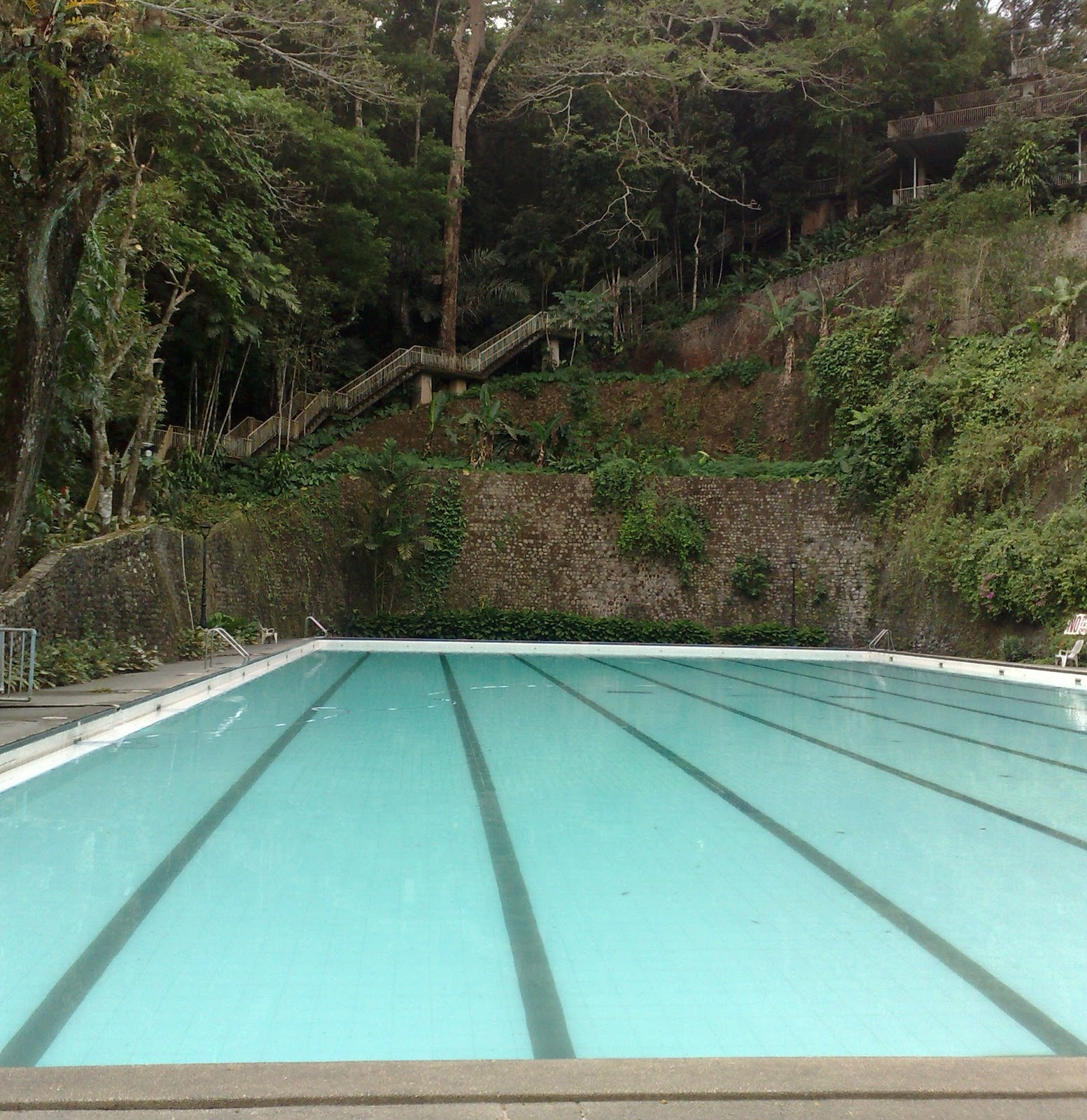 Olympic Swimming Pool In Person: Pook Ni Mariang Makiling: Rates, Charges And Contact