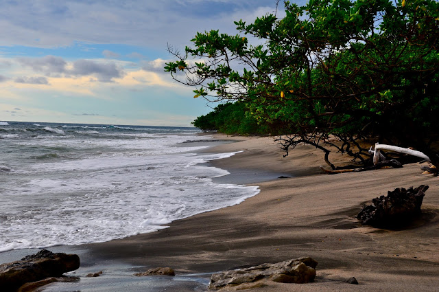 Things to Do in Tamarindo Costa Rica