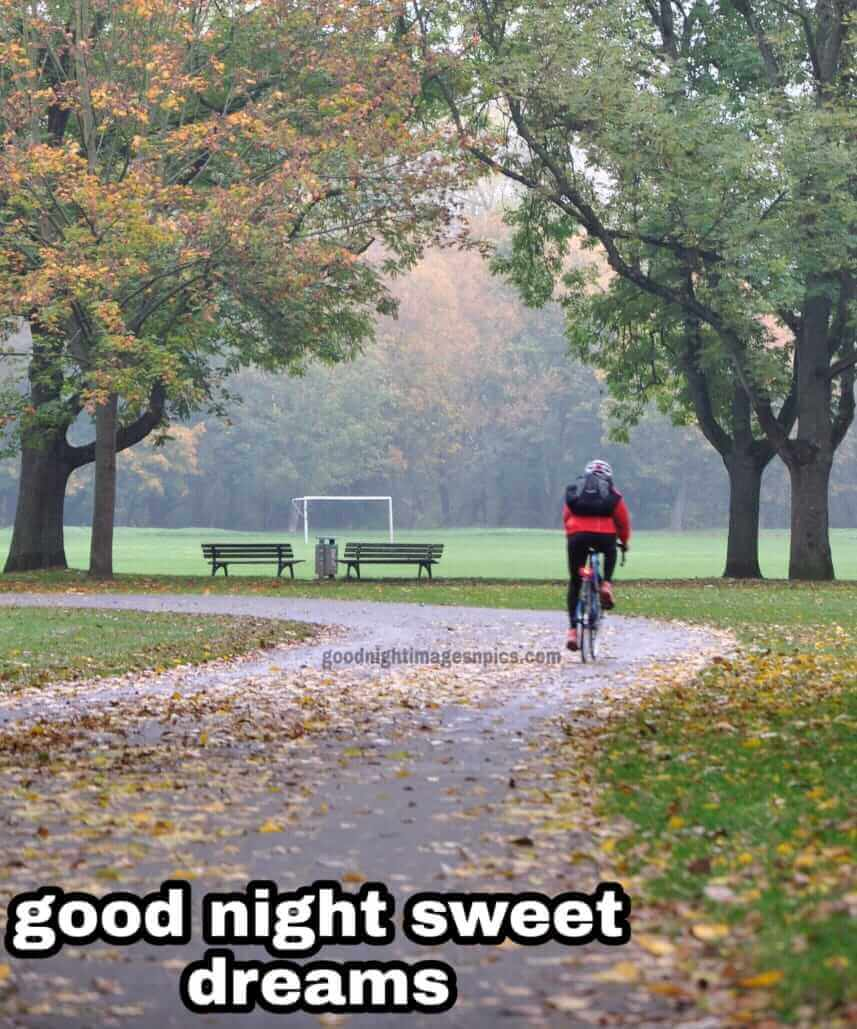 good night's images
