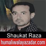 https://humaliwalaazadar.blogspot.com/2019/08/shaukat-raza-nohay-2020.html