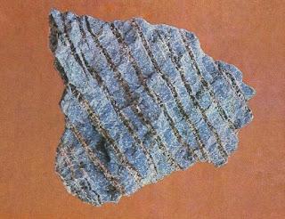 Crisotila Chrysotile fragmento com 12 cm