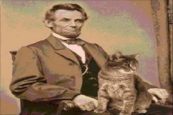 When asked if her partner had a leisure activity, Mary Todd Lincoln responded: felines