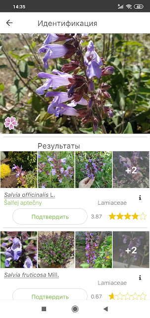 программы для определения растений