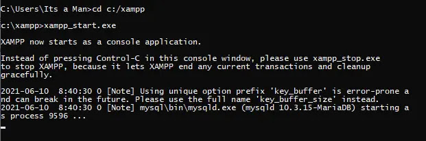 xampp_start.exe berhasil dijalankan