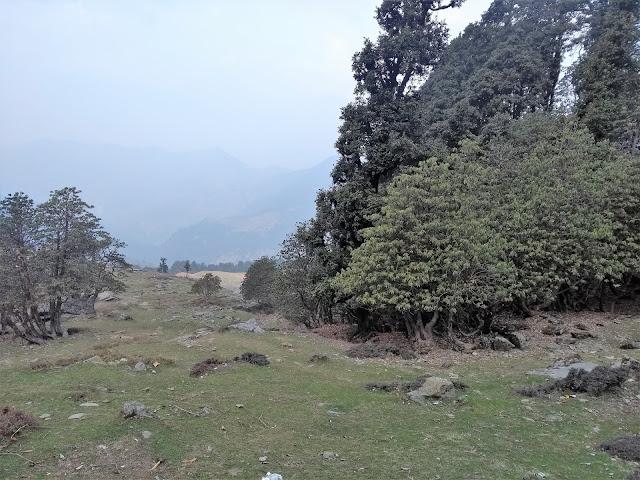 Uttarakhand, Chopta, Trek