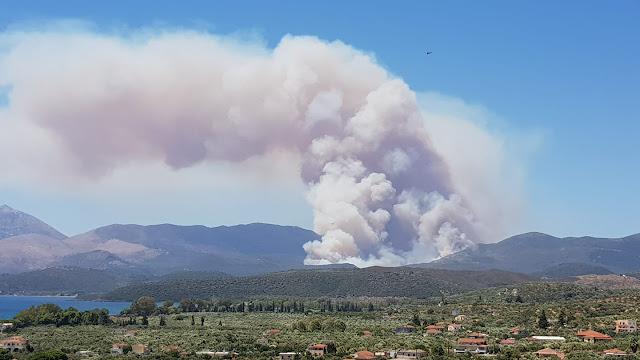 Μεγάλη πυρκαγιά στην Ανατολική Μάνη