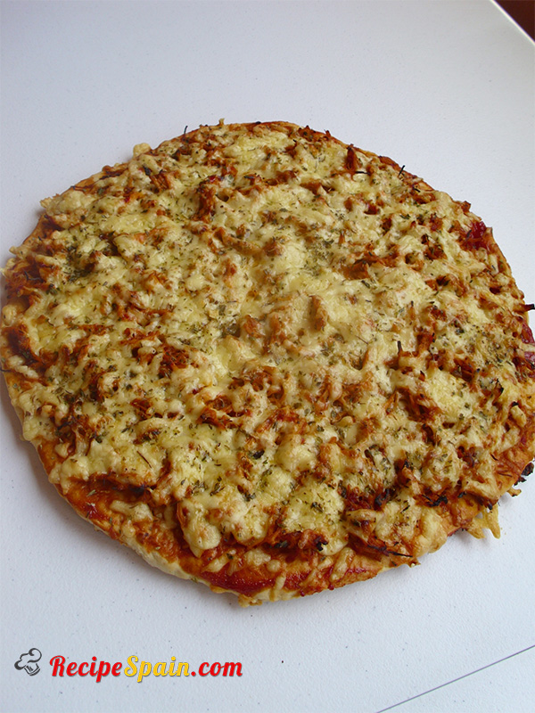 Delicious chicken and cheese pizza