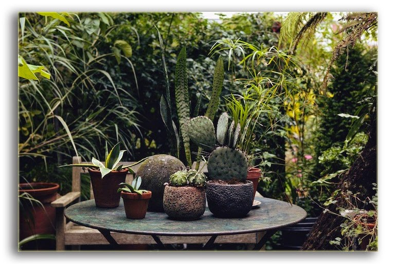 John Tebbs - The Garden Edit