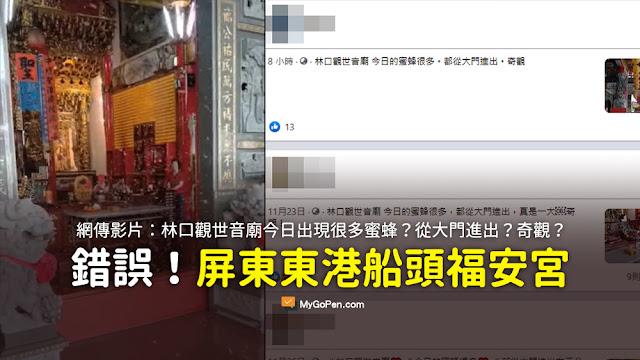 林口 觀世音 蜜蜂 影片 謠言