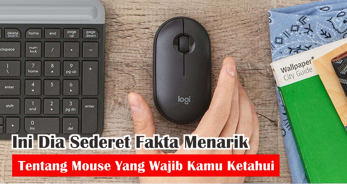 Ini Dia Sederet Fakta Menarik Tentang Mouse Yang Wajib Kamu Ketahui