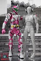 S.H. Figuarts Kamen Rider Jin Flying Falcon 53