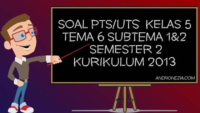 Soal PTS/UTS Kelas 5 Tema 6 Subtema 1 & 2 Semester 2 Tahun 2021