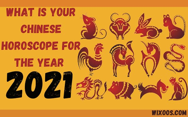 Chinese horoscope for the year