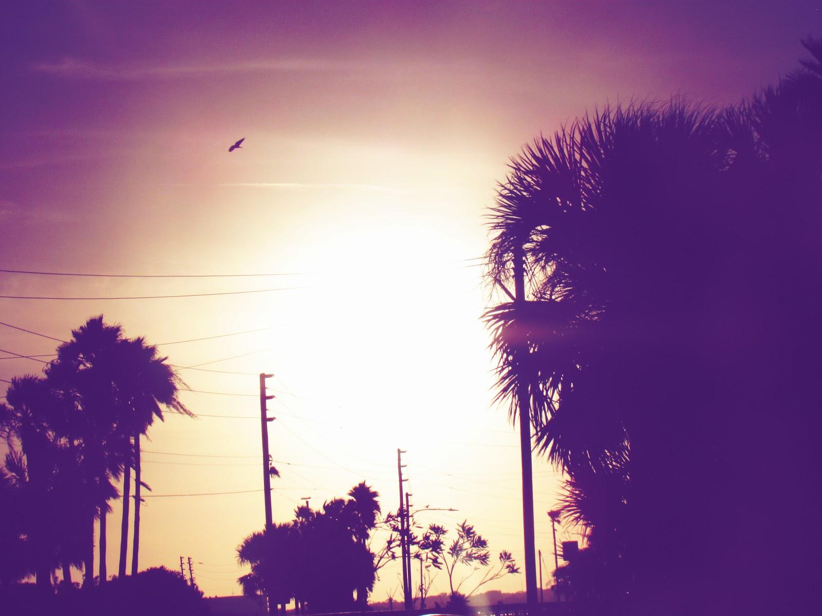 Sunrise photography at the beach on the Dunedin Causeway near Honeymoon Beach, Florida