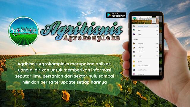 Agribisnis Agrokompleks