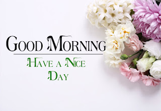 Good Morning Royal Images Download for Whatsapp Facebook4