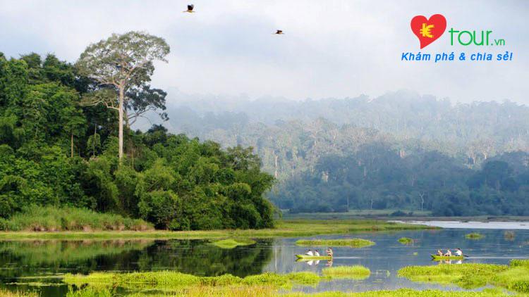 Các điểm du lịch ở Đồng Nai nổi tiếng nhất - Rừng Nam Cát Tiên
