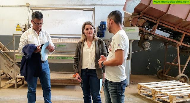 La Consejería de Agricultura del Gobierno de Canarias trabaja con los cabildos insulares en la valoración de los daños ocasionados por el temporal