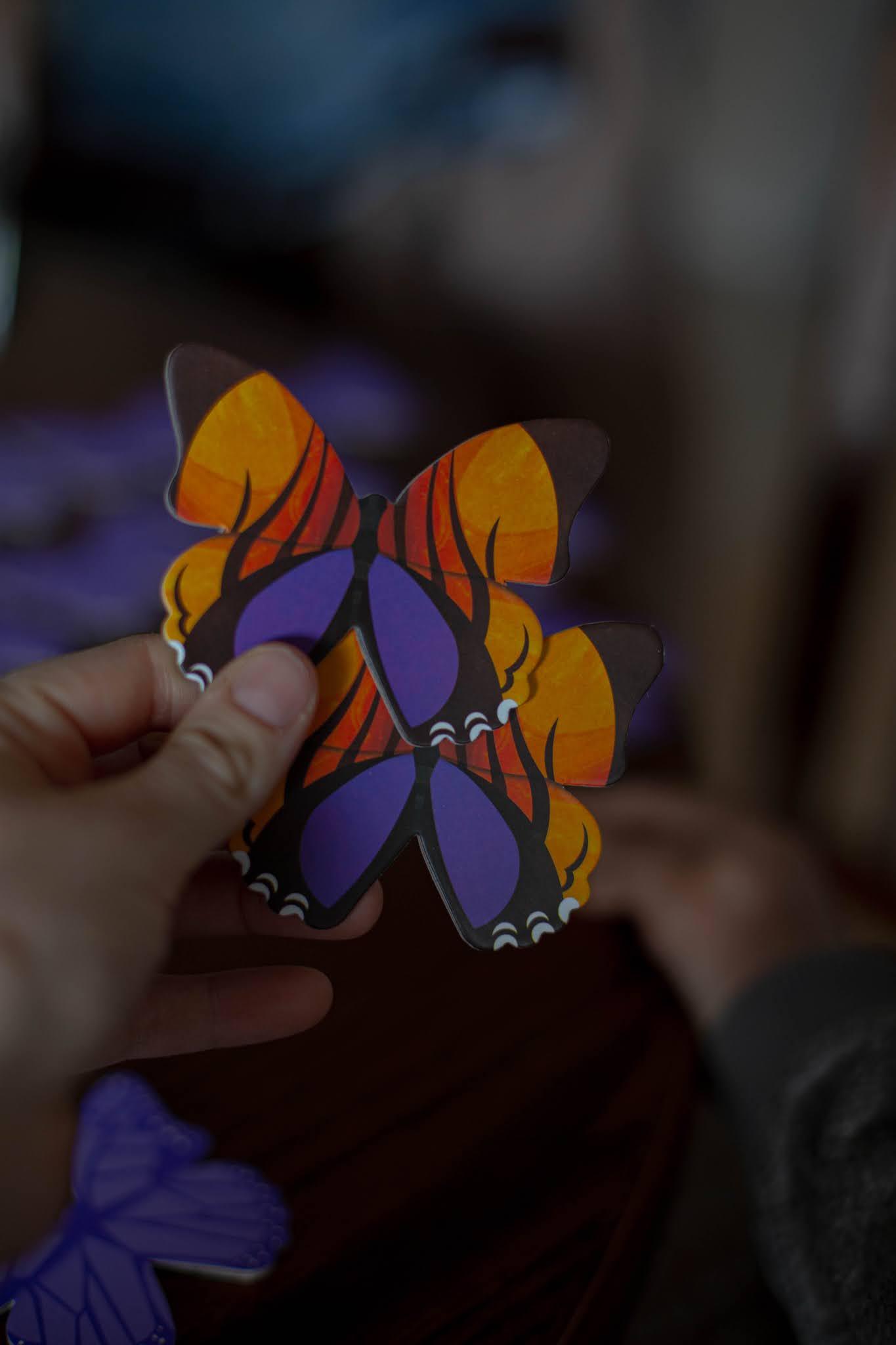 Gra Memory Motyle