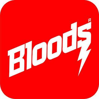 Lowongan Bloods Brebes