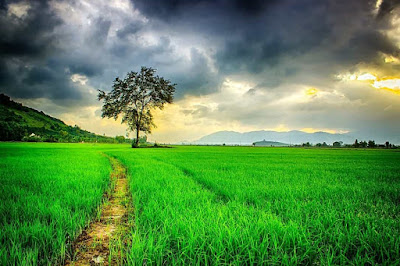 ,جميلة اجمل الصور الطبيعية الخلابة, تحميل اجمل الصور الطبيعية hd, اروع الصور للطبيعة ,اجمل الصور الطبيعية في العالم,اجمل خلفيات الطبيعة ,خليفات الطبيعة 2020,صور خلابة اجمل ,صور الطبيعة 2019 ,صور طبيعة جميلة HD