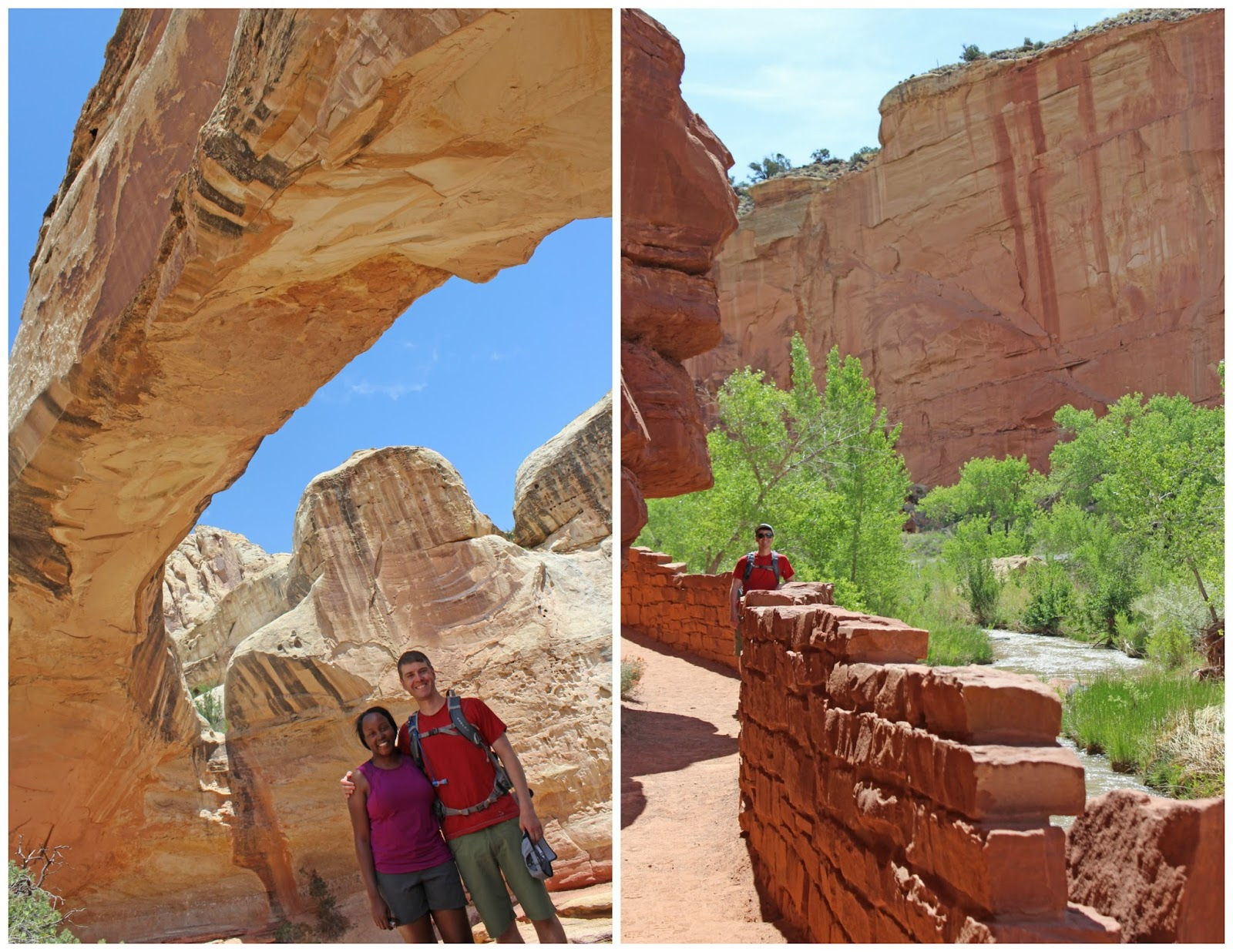 visit capitol reef national park