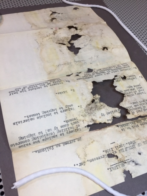 A fragile mouldy document with large losses, opened out to be cleaned.