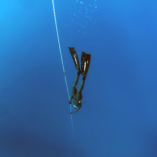 Learn freediving on Oahu