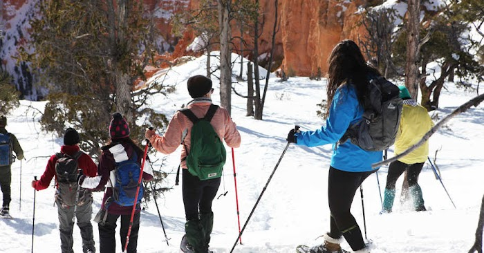 Snowshoe Tour Expore to amazing park reager and mossy carves