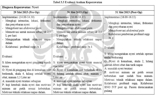 Asuhan Keperawatan Urolithiasis Nanda Nic Noc Terbaru