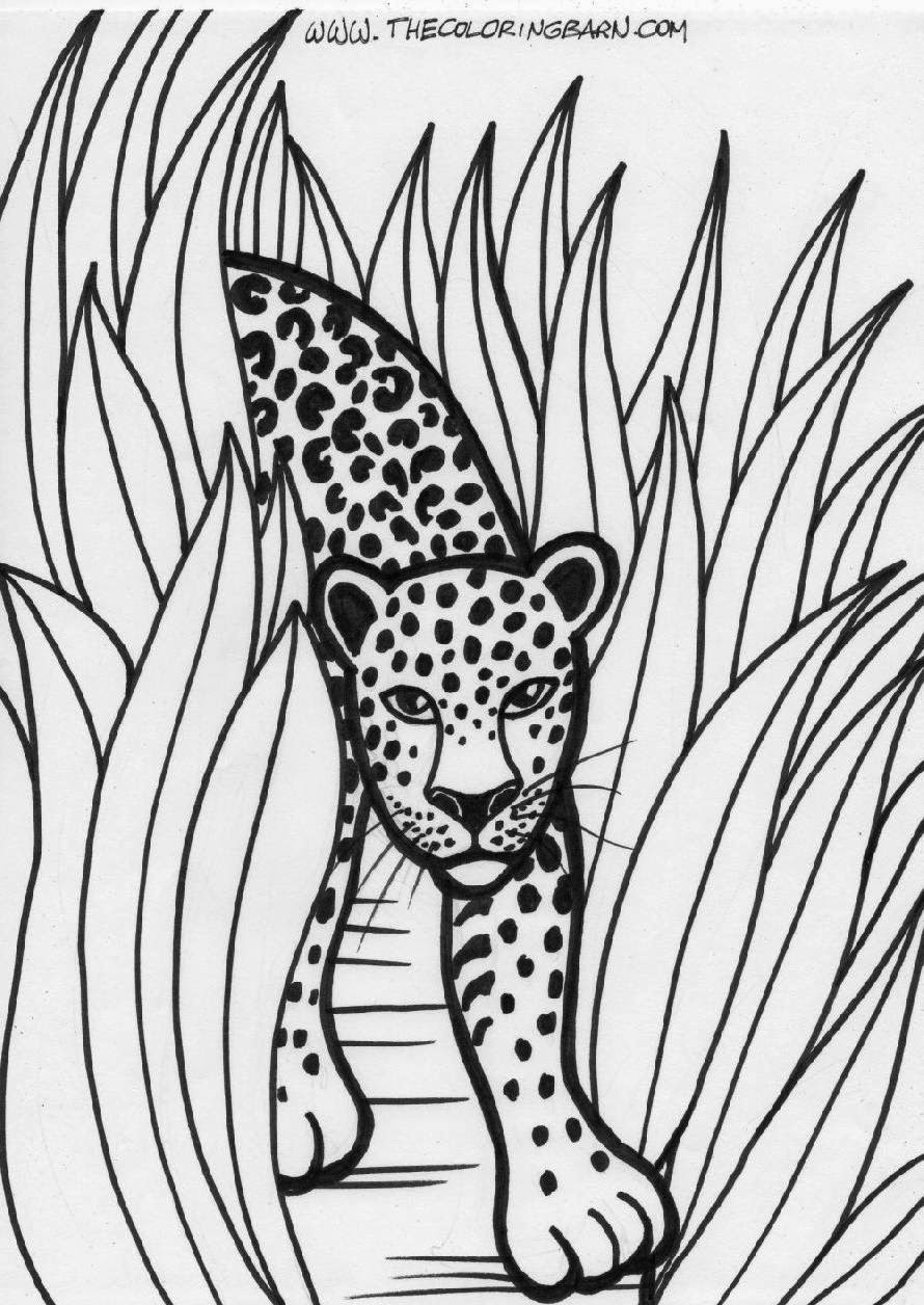 jungle animals coloring pages wild animals coloring book. coloring ...