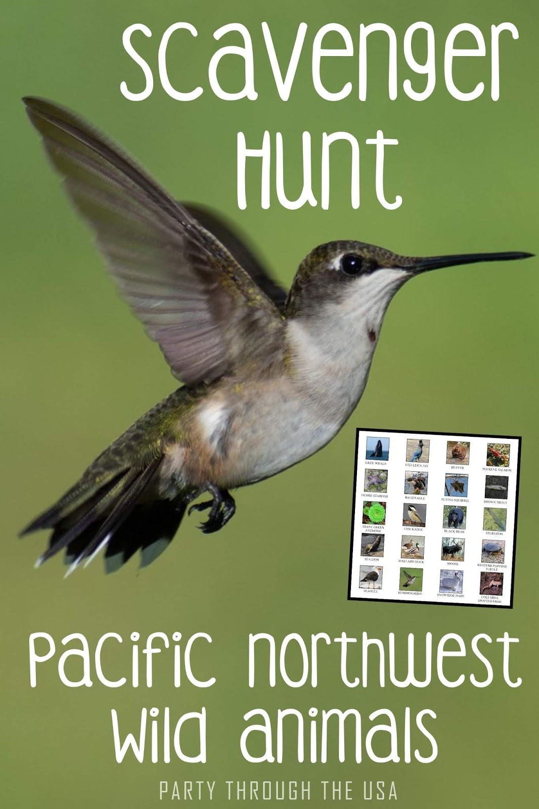 Scavenger Hunt Printable For Pacific Northwest Animals