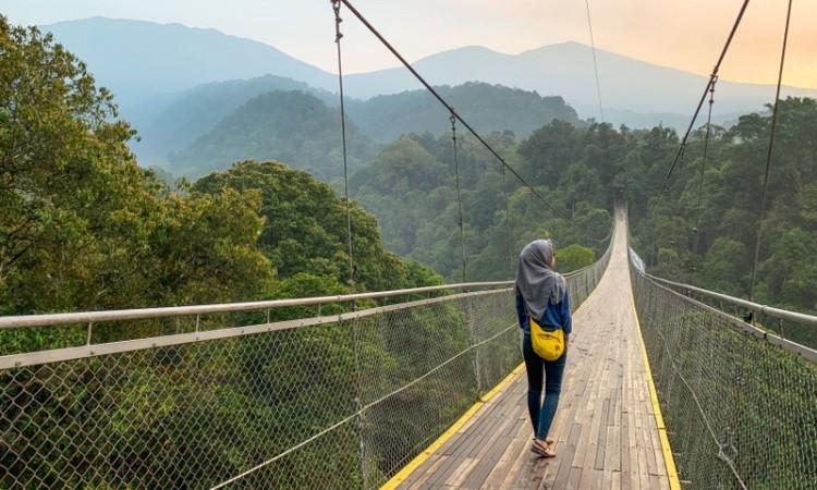 Jembatan Gantung Situ Gunung, Wisata Ikonik di Sukabumi