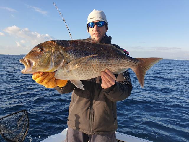pêche au denti, denti poisson