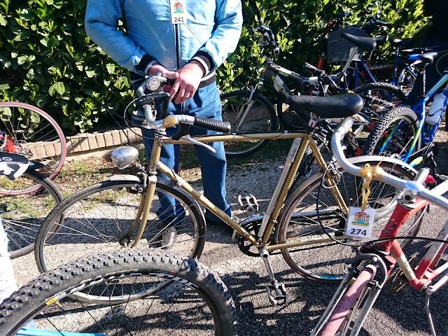 Biciclette Pedalata ecologica Villorba 2016 (TV)